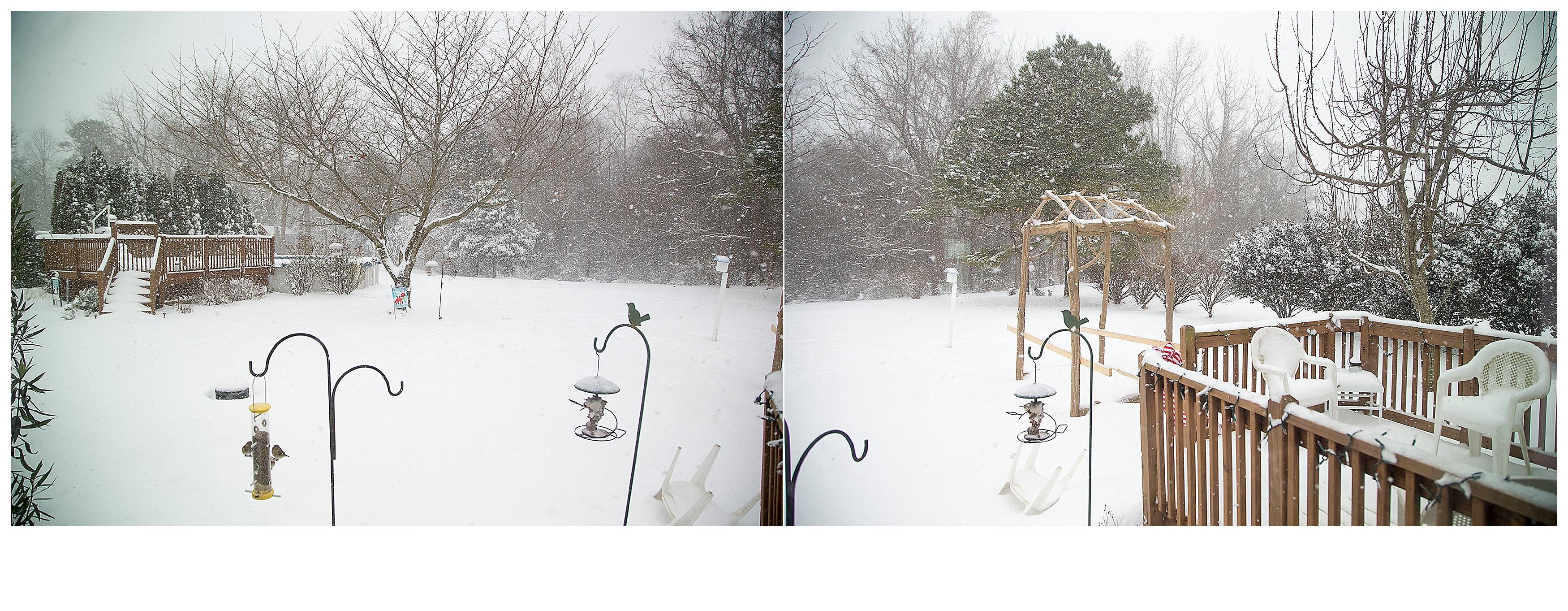 Blizzard_116.jpg